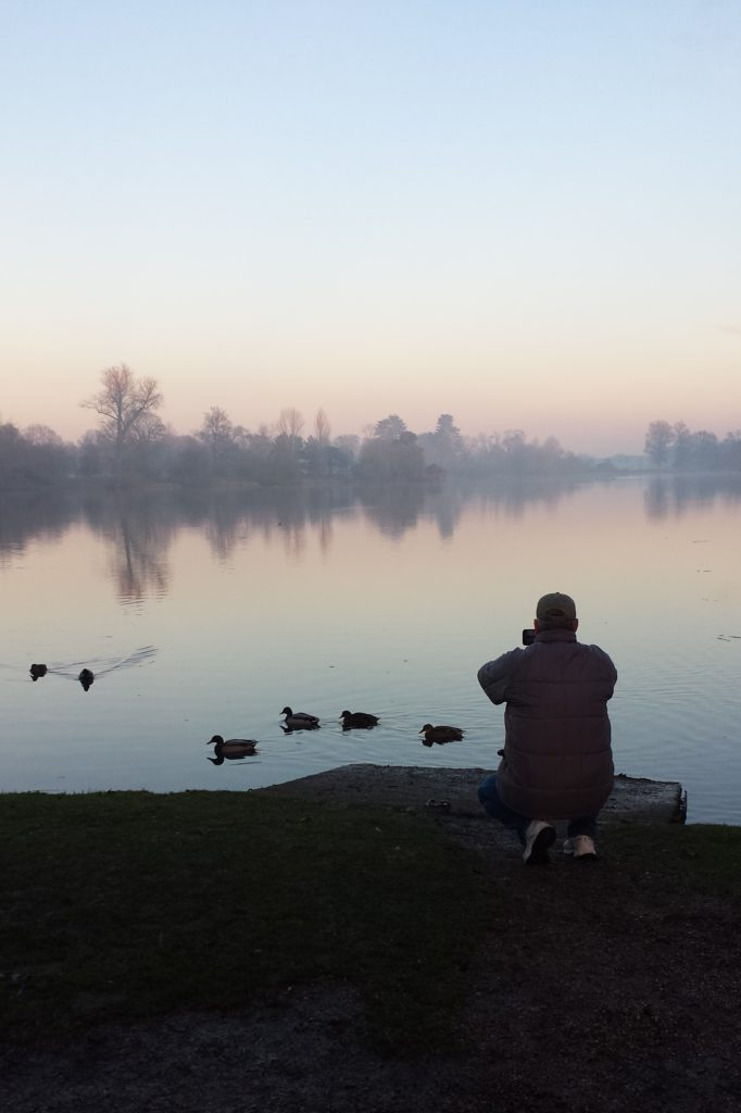 Dust at Hever Lake