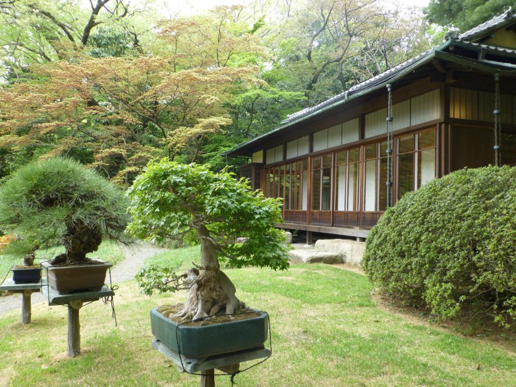 Teahouse at garden