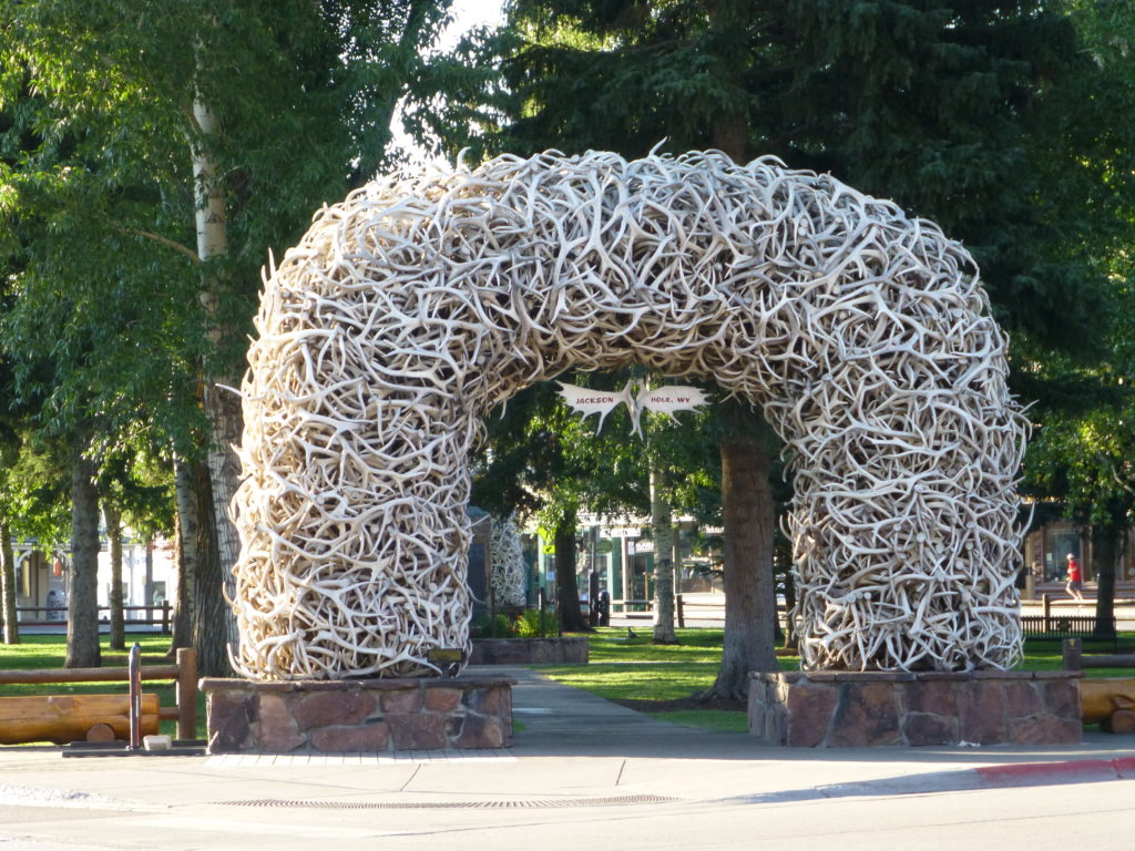 Antler Arch