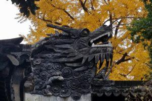 Dragon at Yuyuan Gardens